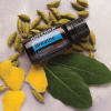 dōTERRA Breathe® Respiratory Blend - 15ml