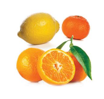 dōTERRA Citrus Bliss® Invigorating Blend - 15ml
