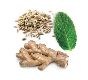 dōTERRA DigestZen® Digestive Blend Softgels