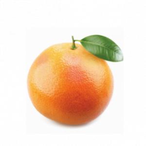 dōTERRA Grapefruit Essential Oil – 15ml