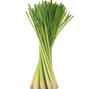 dōTERRA Lemongrass Essential Oil – 15ml