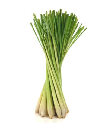 dōTERRA Lemongrass Essential Oil - 15ml
