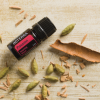 dōTERRA Passion® Inspiring Blend - 5ml
