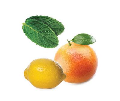 dōTERRA Smart & Sassy® Metabolic Blend - 15ml