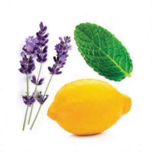 dōTERRA TriEase® Seasonal Blend Softgels