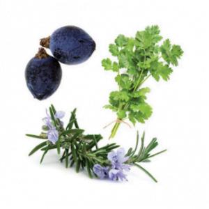 dōTERRA Zendocrine® Detoxification Blend Softgels